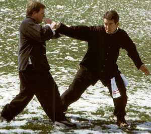 Tai Chi Self-Defense