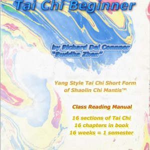 Tai Chi Beginner book